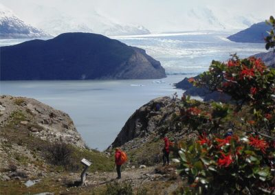 Primer Mirador glaciar grey